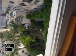 شقة مصيفية للايجار بشاطئ النخيل